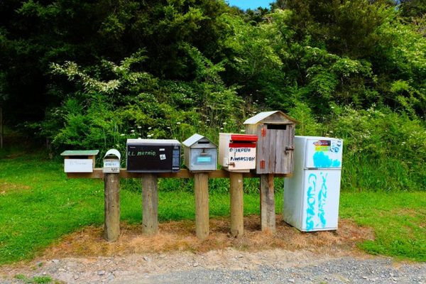 Letterboxes-on-the-Twin-Coast-Cycle-Trail.-Photo-Shandelle-Battersby