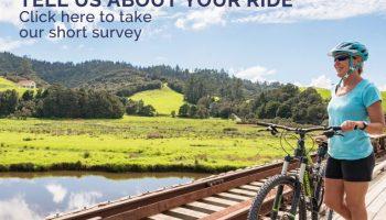 survey2020v3-768x513